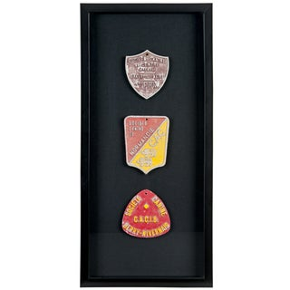 Framed French Canine Award Plaques - S/3