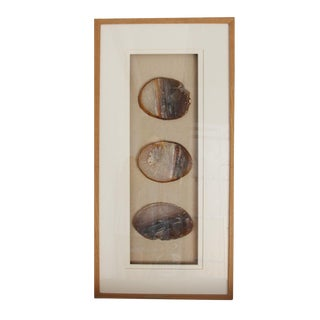 Raw Wood Framed Natural Agate Slices