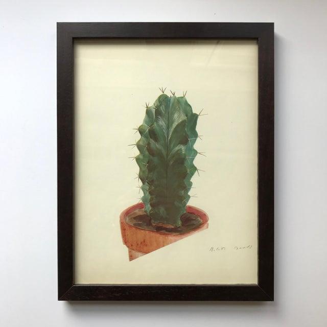 Framed Rock Plants - Set of 32 - Image 8 of 11