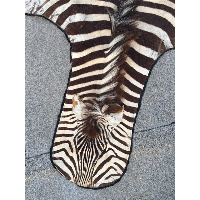 Vintage Zebra Hide Rug - Image 3 of 7