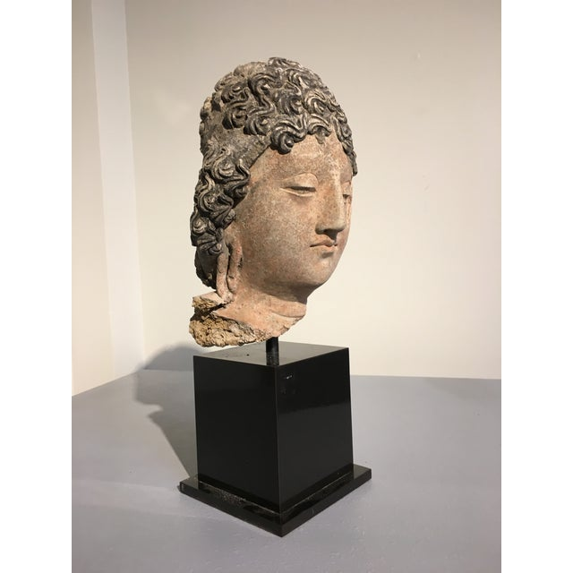 Gandharan Terracotta Head of a Bodhisattva, 3rd - 5th century - Image 3 of 10