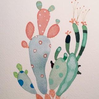 Steve Klinkel Cactus Mix
