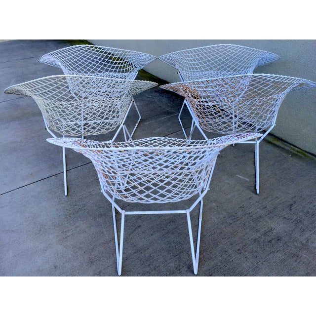 Harry Bertoia Mid-Century White Chairs - Set of 5 - Image 4 of 11