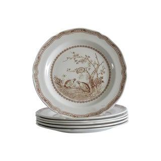 English Quail Plates - Set of 6