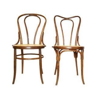 Antique Bentwood Chairs In The Style of Michael Thonet or Fischer- A Pair
