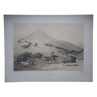 """Buffalo Hunt. Chase"" Ltd Ed Serigraph-Americana"