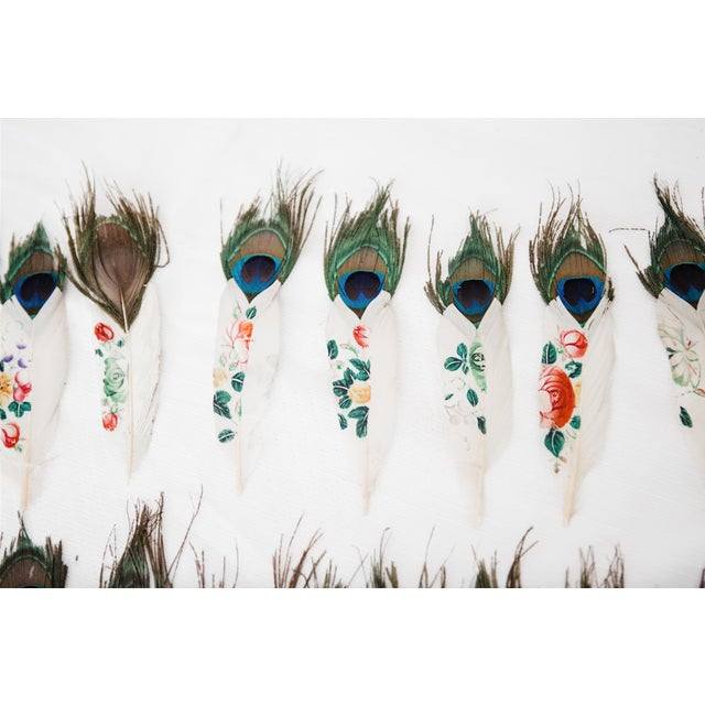 Painted Peacock Feathers - Set of 14 - Image 7 of 8