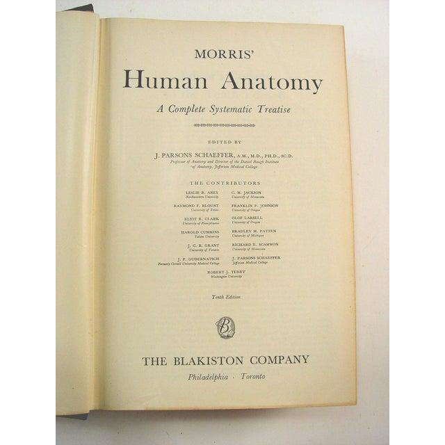 Human Anatomy Book, 1947 - Image 3 of 10