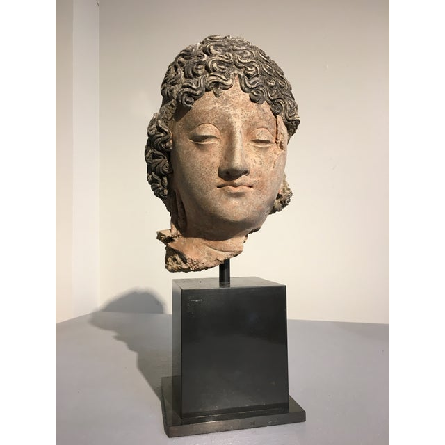 Gandharan Terracotta Head of a Bodhisattva, 3rd - 5th century - Image 2 of 10