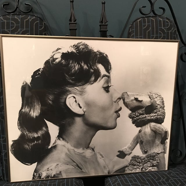 Vintage Television Publicity Photograph of Shari Lewis and LampChop - Image 4 of 8