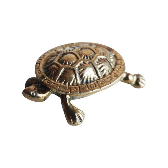 Small Brass Turtle Box - Image 1 of 5