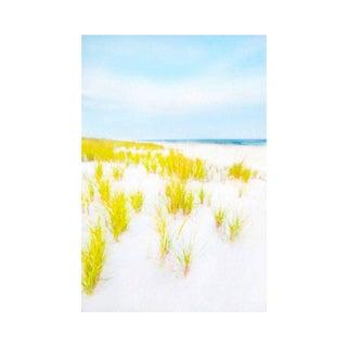 "Cheryl Maeder ""Hampton Dunes"" Art Photograph"