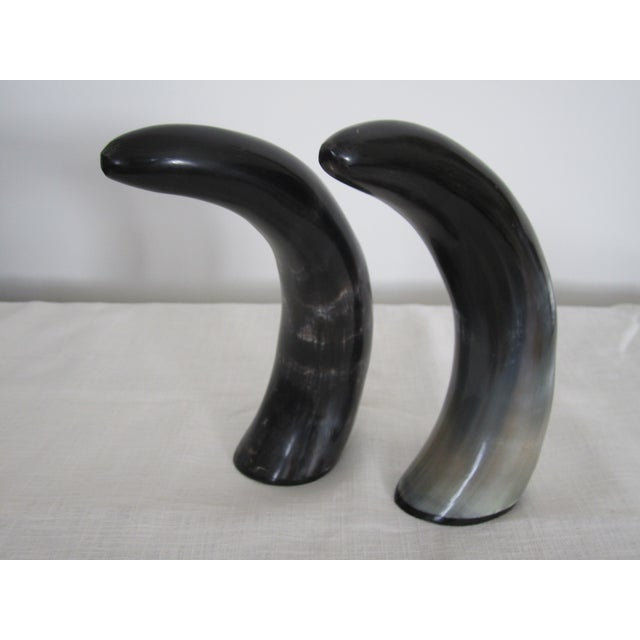 Image of Authentic Black & White Horn Sculptures - A Pair