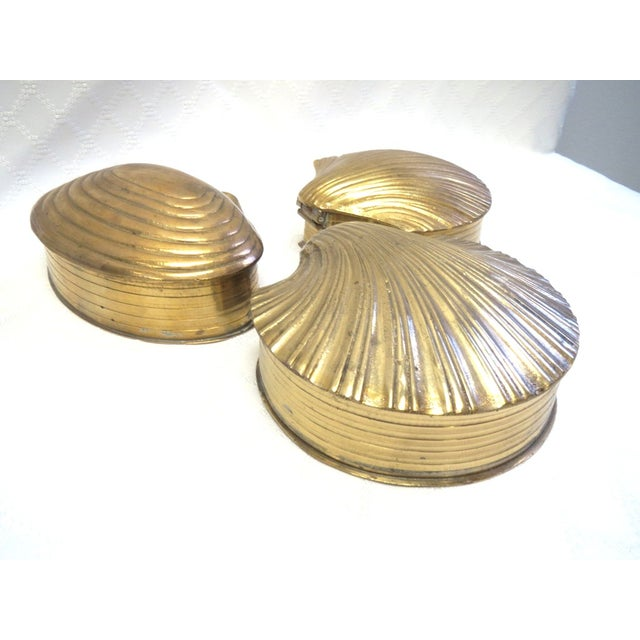 Image of Brass Shells Boxes, Palm Beach Style -Set of 3