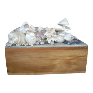 Nautical Shell Decorated Box