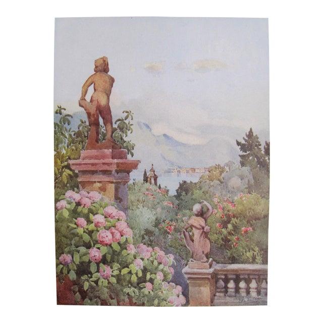 1905 Ella du Cane Print, Hydrangeas, Isola Bella, Lago Maggiore - Image 1 of 4
