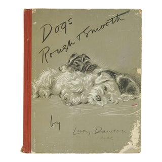 Dogs Rough and Smooth Book by Lucy Dawson