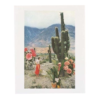 Urban Outfitters Cactus Collage Poster