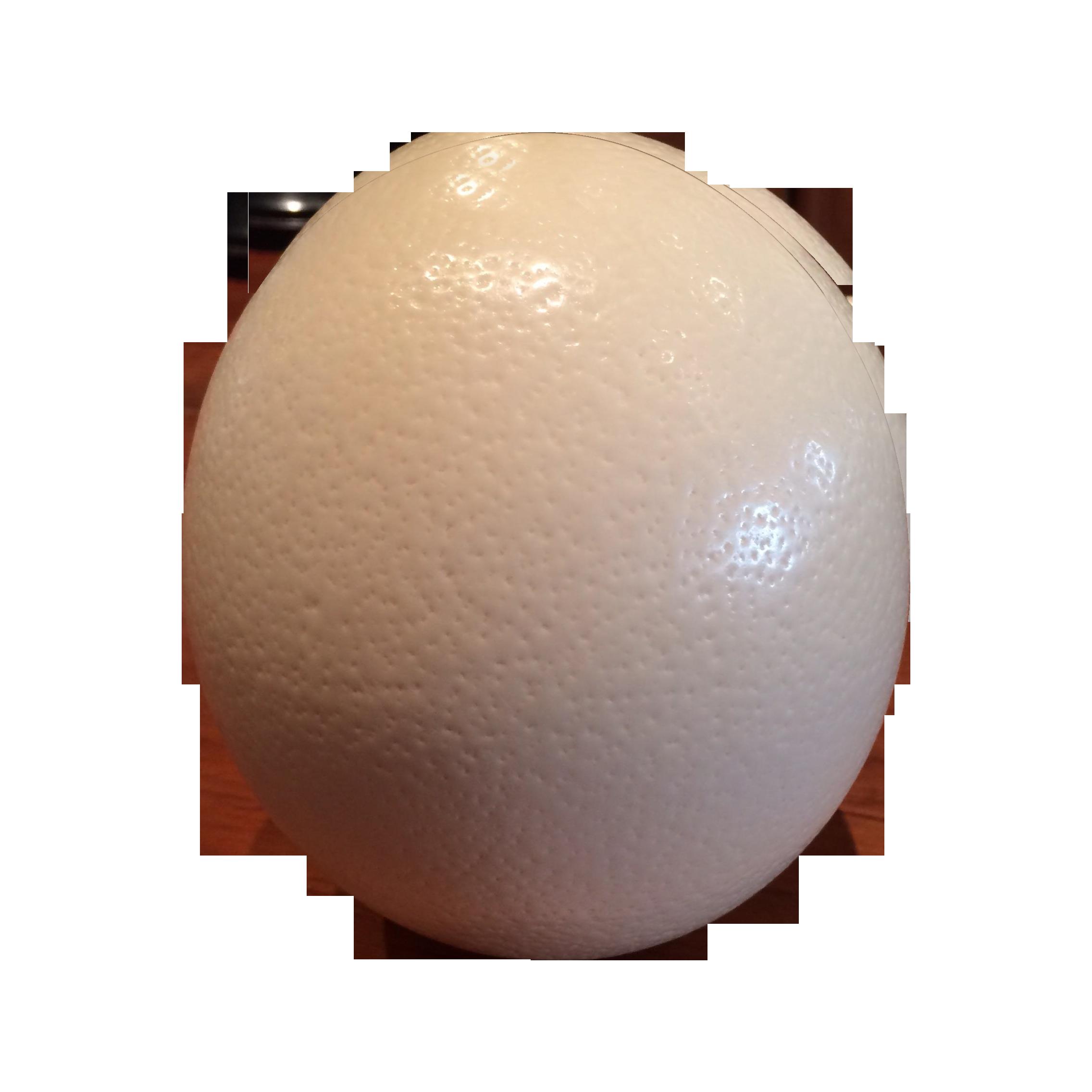 White Ostrich Egg Chairish