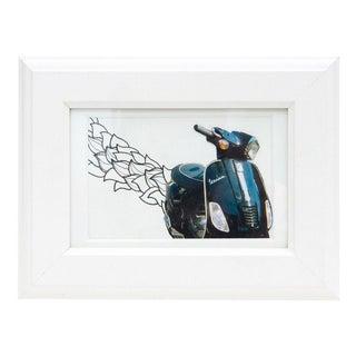 Framed Original Leaf Drawing & Photograph Collage