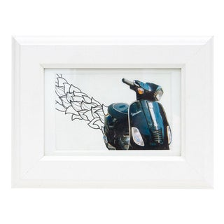 Framed Original Leaf Drawing & Photograph Collage