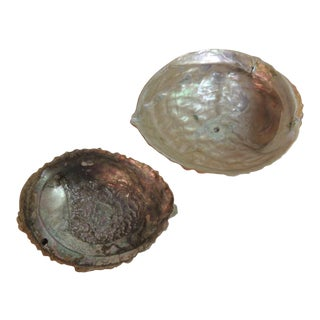 Vintage Abalone Shells - A Pair