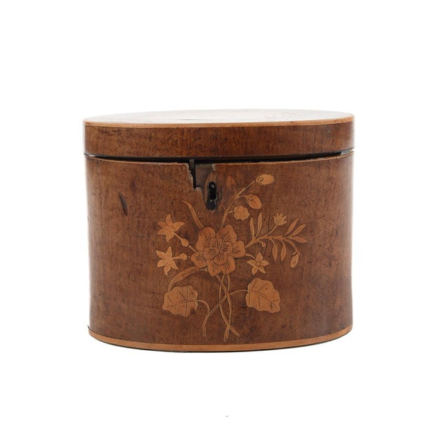 19th Century Oval Shaped Wood Box with Sea Shells - Image 3 of 9