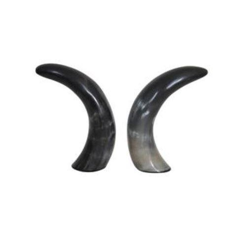 Authentic Black & White Horn Sculptures - A Pair - Image 1 of 7