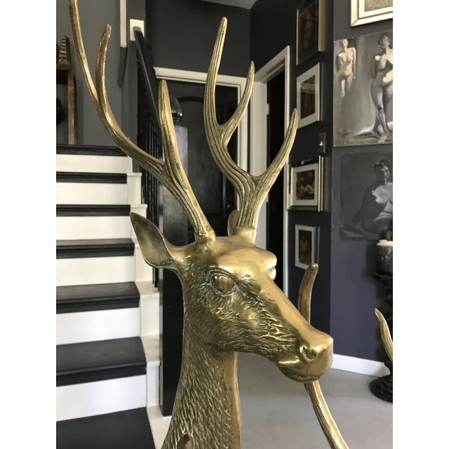 Life-Sized Brass Deer Statues - A Pair - Image 11 of 11