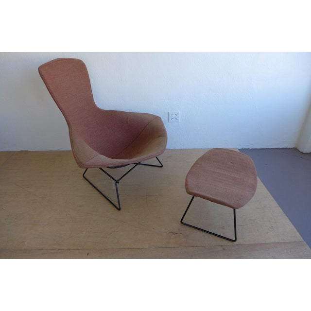 Harry Bertoia Bird Lounge Chair and Ottoman - Image 5 of 9