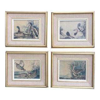 Vintage Framed Duck Prints - Set of 4