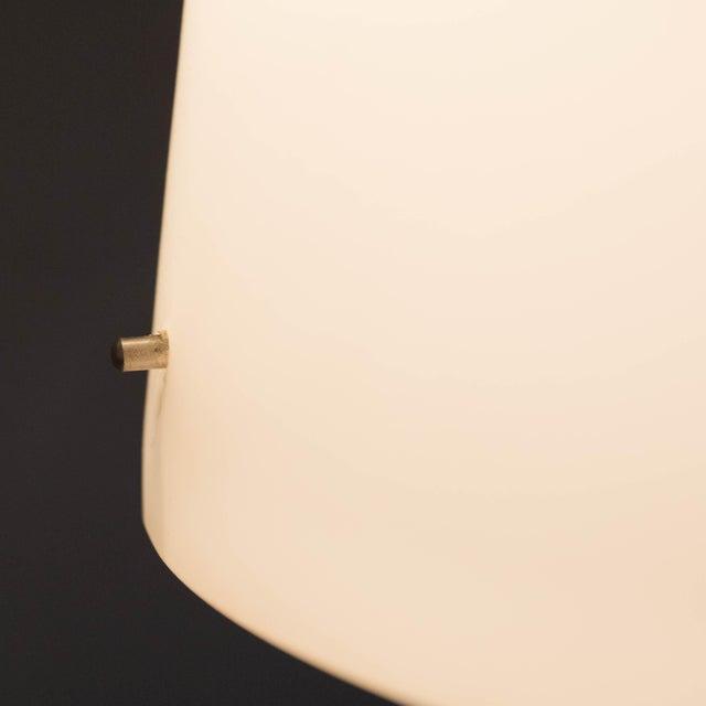 Image of Rotaliana Merlino F-1 Floor Lamp