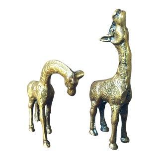 Italian Brass Giraffes - A Pair