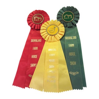 Horse Show Ribbons - Set of 3