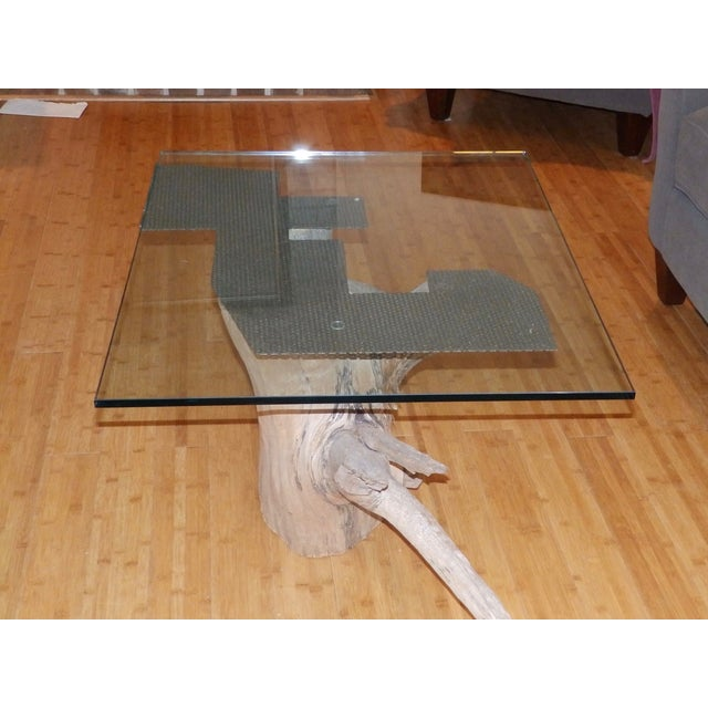 Verina Baxter Cedar Wood and Glass Coffee Table - Image 4 of 7