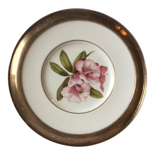 Spode Floral Plate With Shreve Sterling Silver Rim