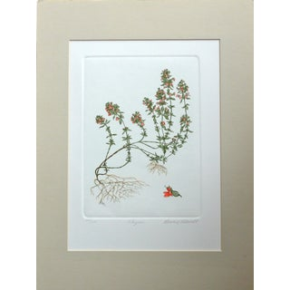 Thyme, Original Signed & Numbered Etching