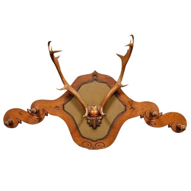 Victorian Carved Oak and Antler Coat/Hat Rack - Image 1 of 8