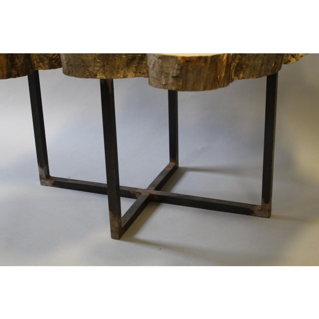 natural petrified wood cocktail or side table chairish. Black Bedroom Furniture Sets. Home Design Ideas