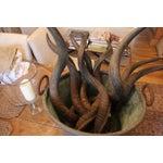 Image of Spiraled Antelope Horn