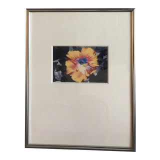 Framed Hibiscus Flower Photograph
