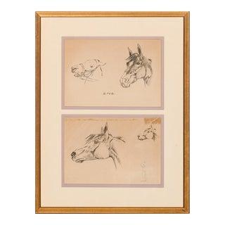"""Horse Heads"" Pencil Drawings"