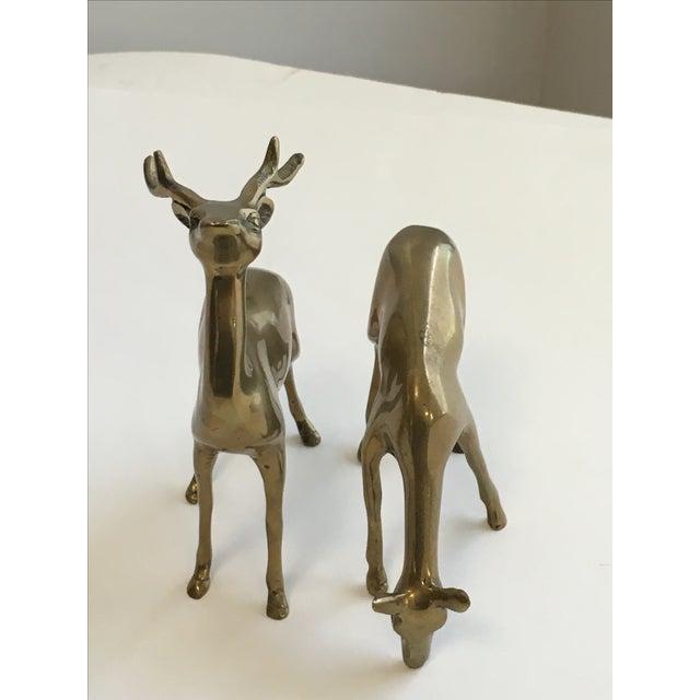 Image of Brass Deer Figurines - A Pair