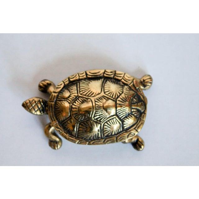 Turtle Trinket Box - Image 4 of 5