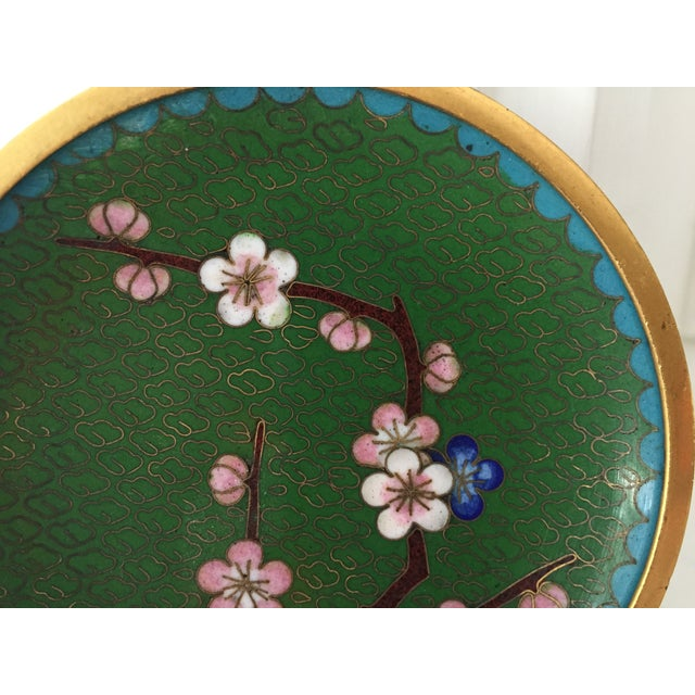 Image of Small Green Cloisonne Dish