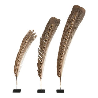 Sarreid Ltd. Peacock Feather - Set of 3