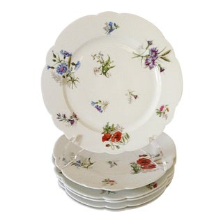 French Wildflower Plates - Set of 6