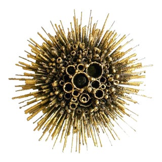 The Urchin Wall Sconce by James Bearden