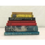 Image of Wild Animal Collection - Set of 7 Books