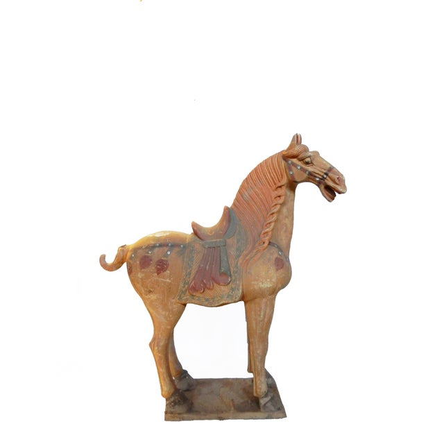 Tang Dynasty-Style Standing Horses - A Pair - Image 2 of 8
